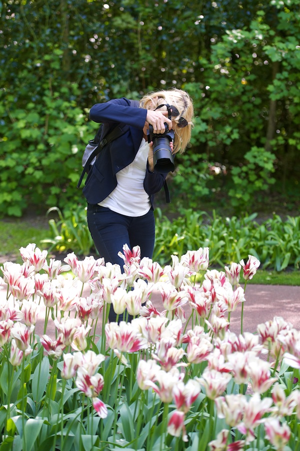 Photo tuition available in the Keukenhof gardens in Lisse, Netherlands
